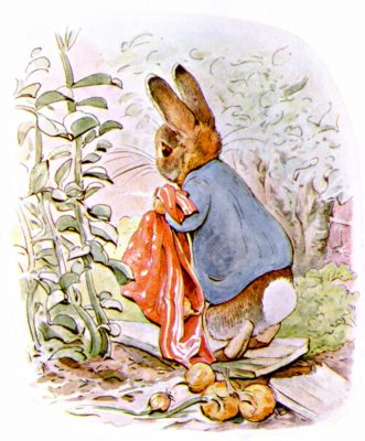 Illustration from The Tale of Peter Rabbit