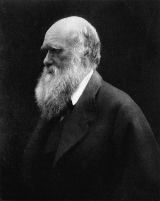 Black and White Photo of Charles Darwin by Julia Margaret Cameron